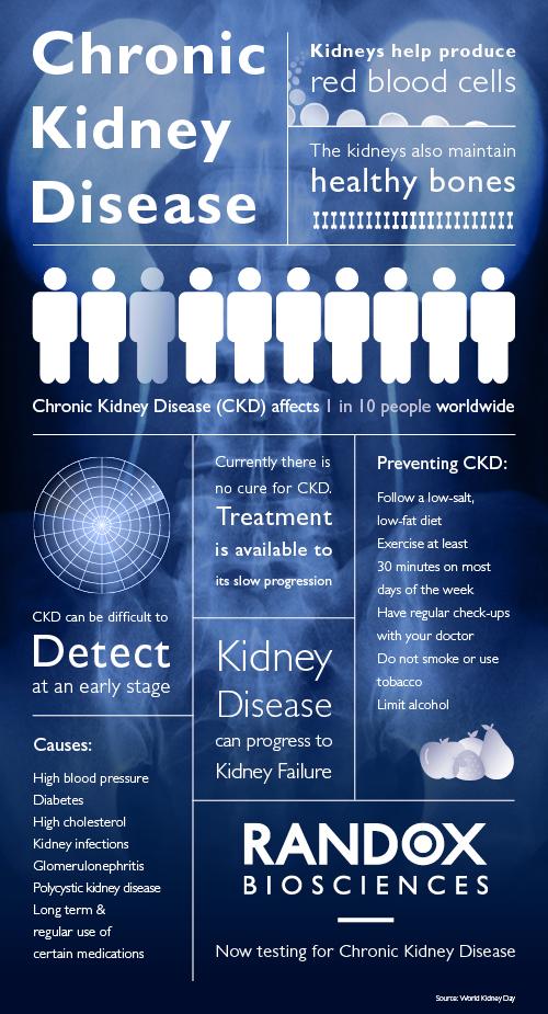 chronic kidney disease ckd infographic